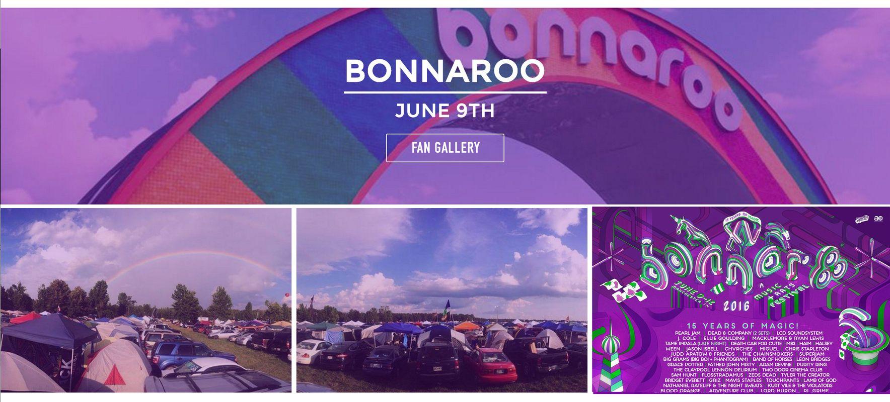 Bonnaroo Fan Gallery